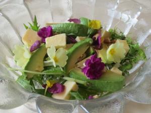 flower salad spring