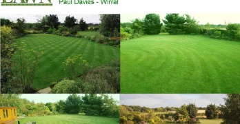 Britain's Best Lawn Competition