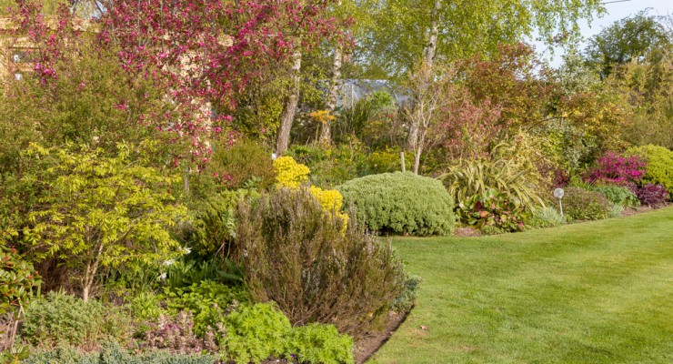 1000 pixels - Fieldcrest Garden - Britain's Best Lawn May 15-10