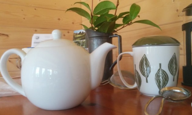 Anyone for Tea? Growing Herbs and Flowers for Teas