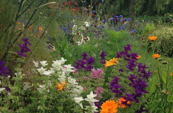 Garden Design 2018