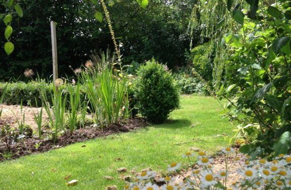 Start Gardening Course