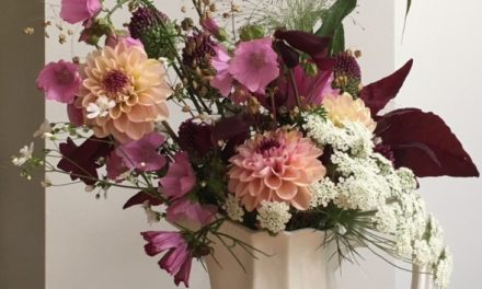 Farm Gate Flowers – back for 2019!