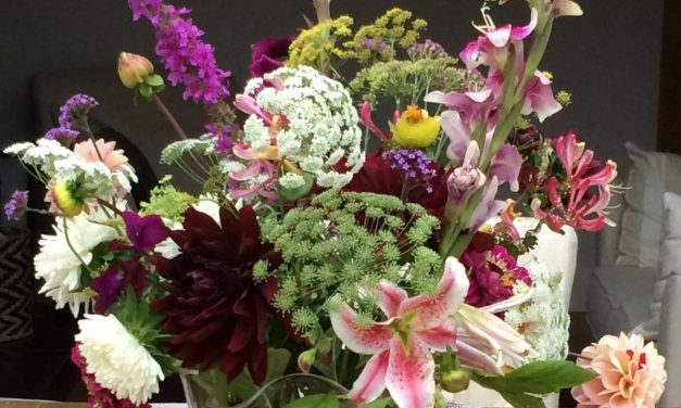 Farm Gate Flowers – New for 2018!