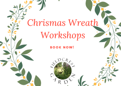 Christmas Wreath Making December 2019