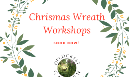 Christmas Wreath making 2019