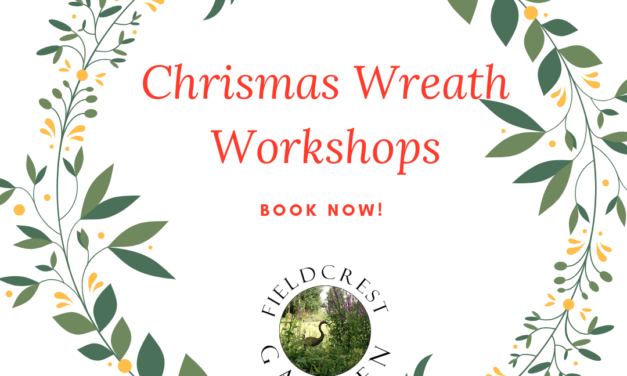 Christmas Wreath making 2019