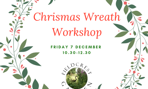 Christmas Wreath Making 7 December 2018