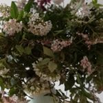 Mother's Day Posy and cancelled classes