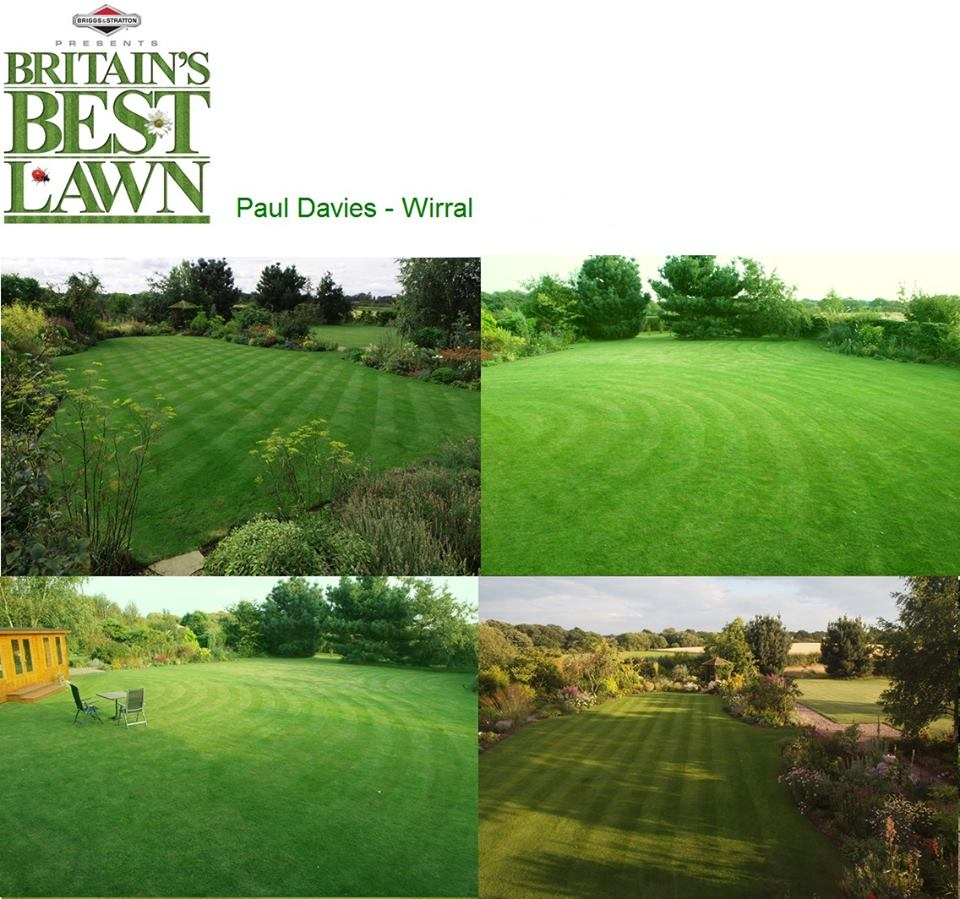 Britain's Best Lawn?