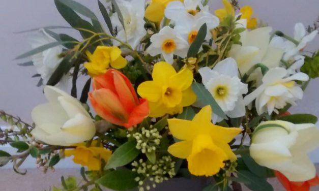 Spring at Fieldcrest